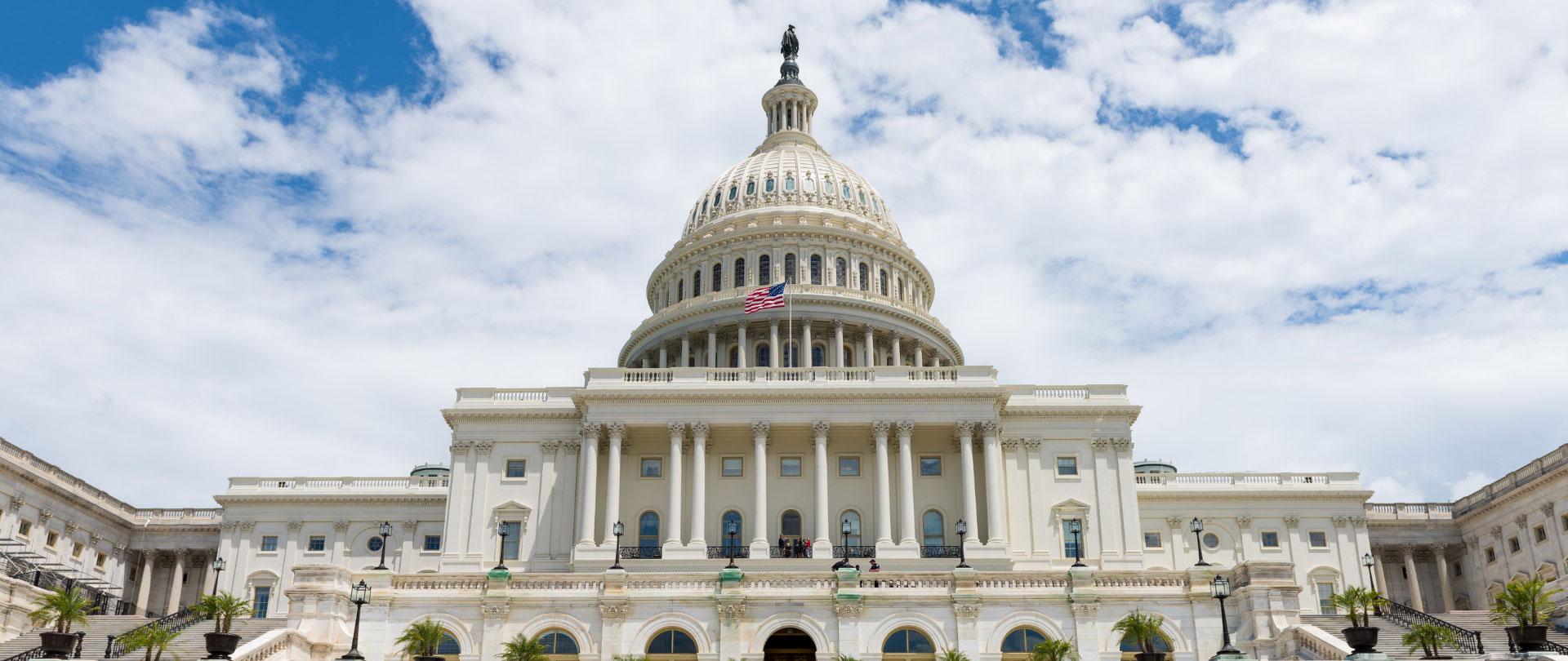Election Special - The Senate